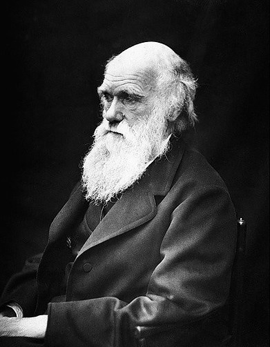 Darwin is mentioned in the book The Power of Different as a person with a predisposition to anxiety.